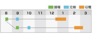 BL-631 作型表