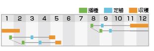 ファイター 作型表
