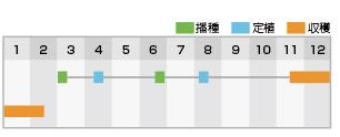 龍翔 作型表
