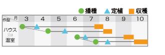 夏系PF18号作型表