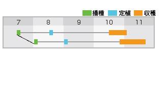 あけ緑作型表