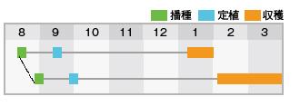 YR太陽作型表