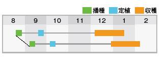 BL-646作型表