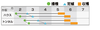 クレオ花火作型表