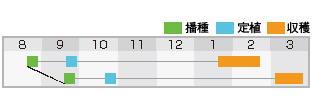盛緑180作型表
