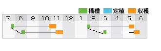 ピクセル作型表
