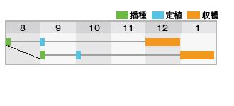 美緑408作型表