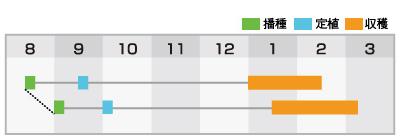 クリア(BL-819)作型表