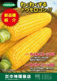 わくわくするトウモロコシ-表